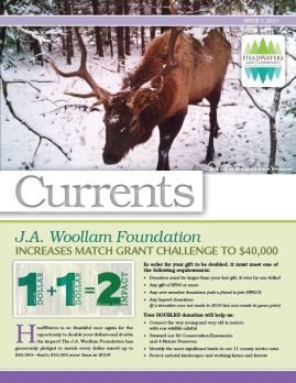 Click the link to view the full newsletter https://hwlc.files.wordpress.com/2015/01/currents-2017-issue-1.pdf