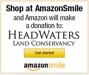 HWLCAmazon_smile_banner-300x254