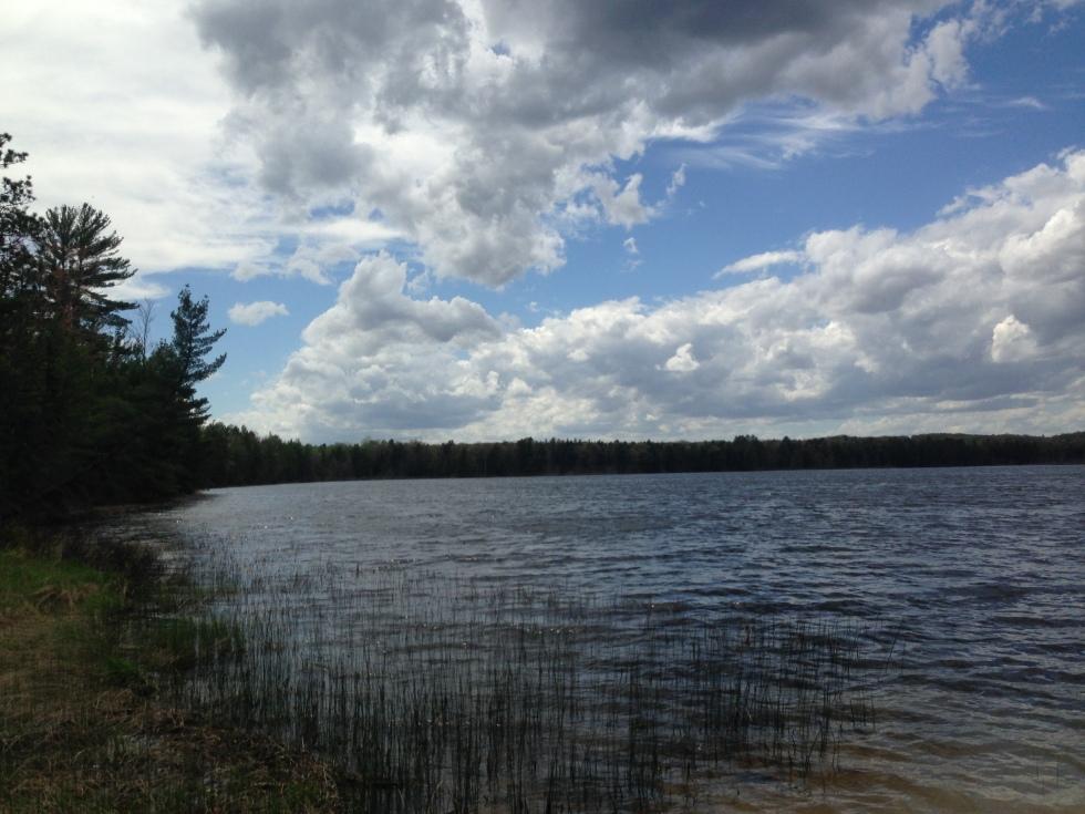Wakeley Lake
