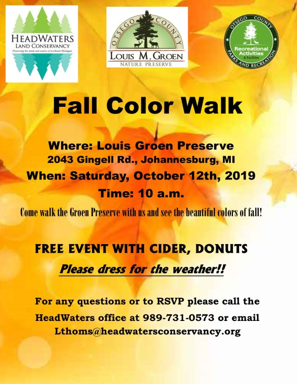 2019 Color Walk Flyer.jpg